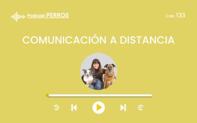 Capítulo 133. Comunicación a distancia