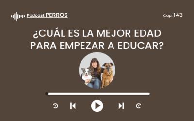 Capítulo 143. ¿Cuál es la mejor edad para empezar a educar a mi Perro?