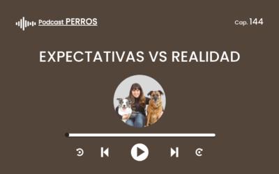 Capítulo 144. Expectativas vs Realidad